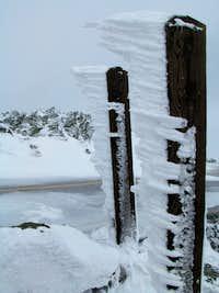 Rime ice on Mt. Washington