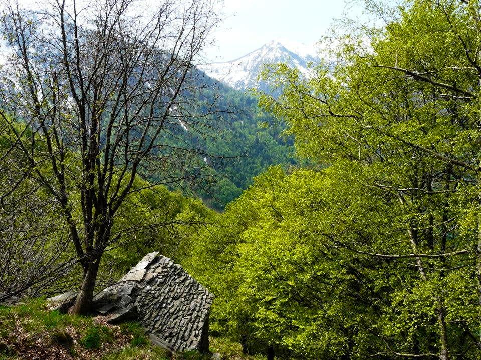 Alpe Nancino (Ogliana Valley)