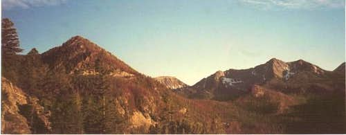 View of lower Pintler peaks...