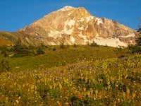 Golden Light on Mt. Hood