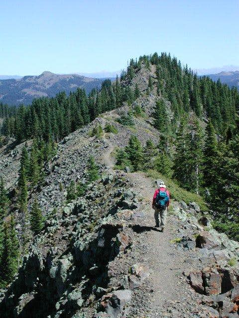 Heading toward the Crag Crest...