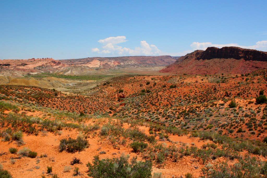 Desert Color...