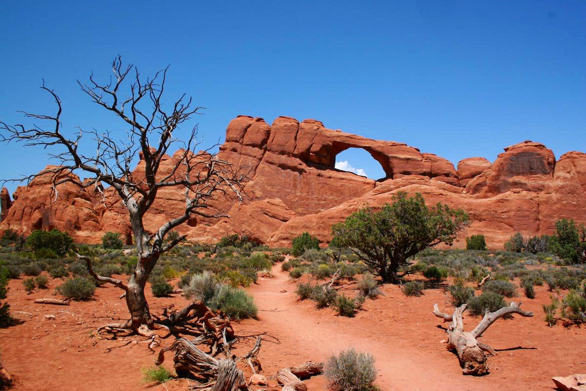 Skyline Arch, Arches National Park, Arches National Park, Utah ...