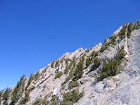 Wallace Canyon Ridge
