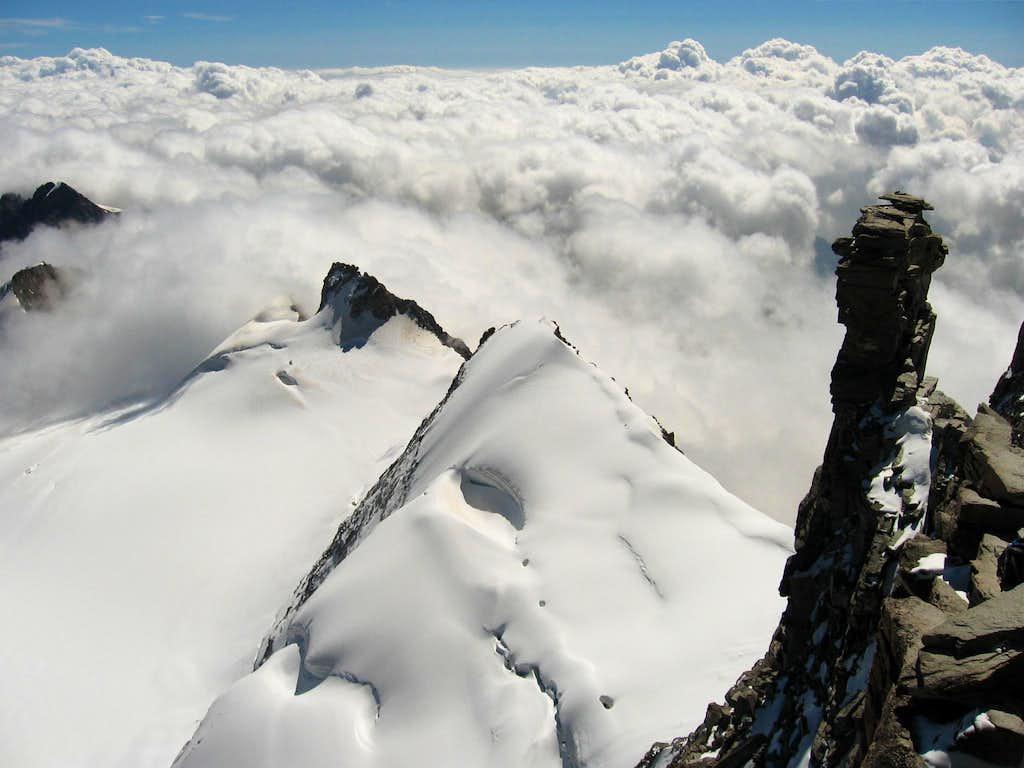The cresta Gastaldi seen from the summit of Gran Paradiso.