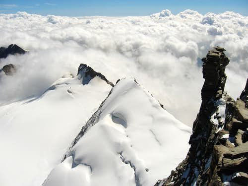 The cresta Gastaldi seen from the summit of Gran Paradiso.