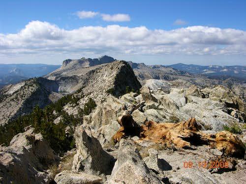 Tuolumne Peak Summit View