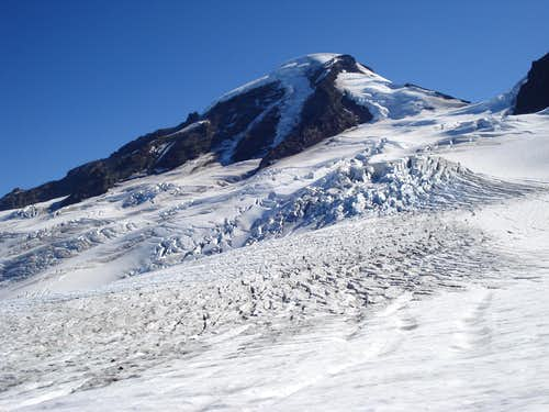 View of Mount Baker and Coleman Glacier