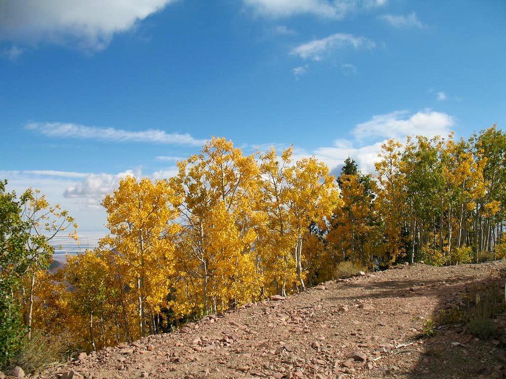 Fall hits Frisco Peak