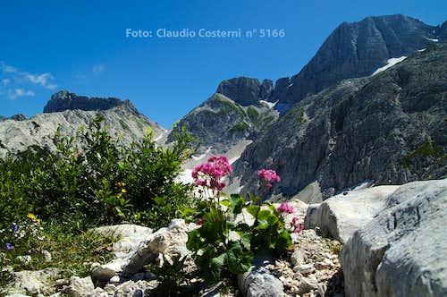 Conca Prevala - Monte Forato