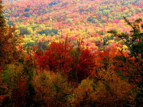 Fall colors on Mt. Washington