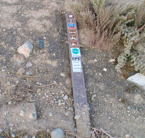The BLM marker that