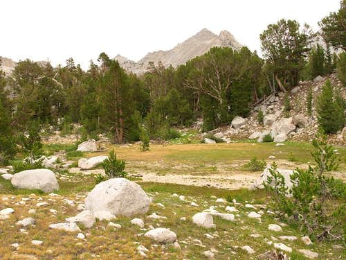 Meadow in Kearsarge Lakes area