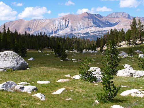meadow on the JMT near Wallace Creek