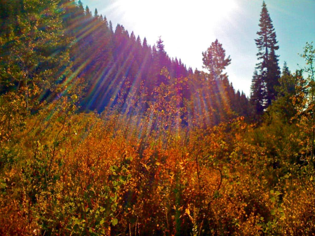 Rocky Canyon Fall Colors
