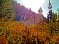 Rocky Canyon Fall Colors