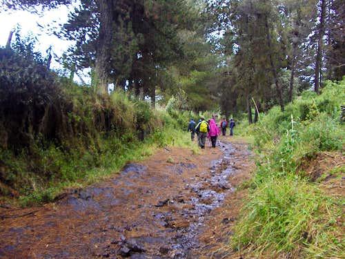 A rainy comeback from Pasochoa