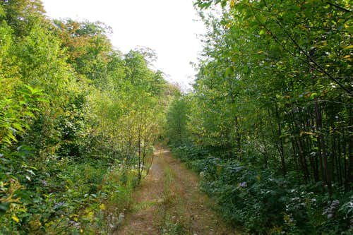 Batchawana Mountian Trail Road