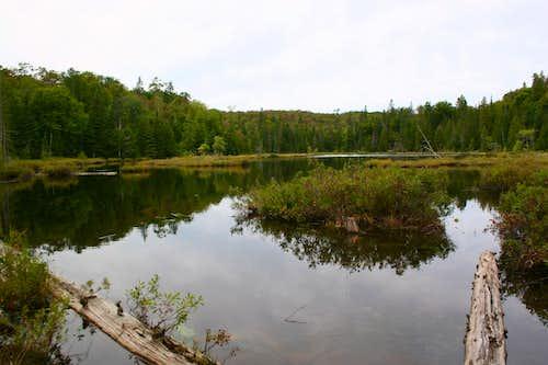 Little Turkey Lake
