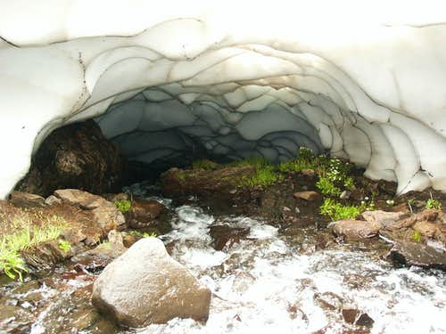 Wicked Cool Stream Tunnel