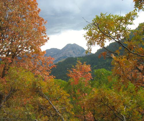 Fall Colors Framing North Timpanogos