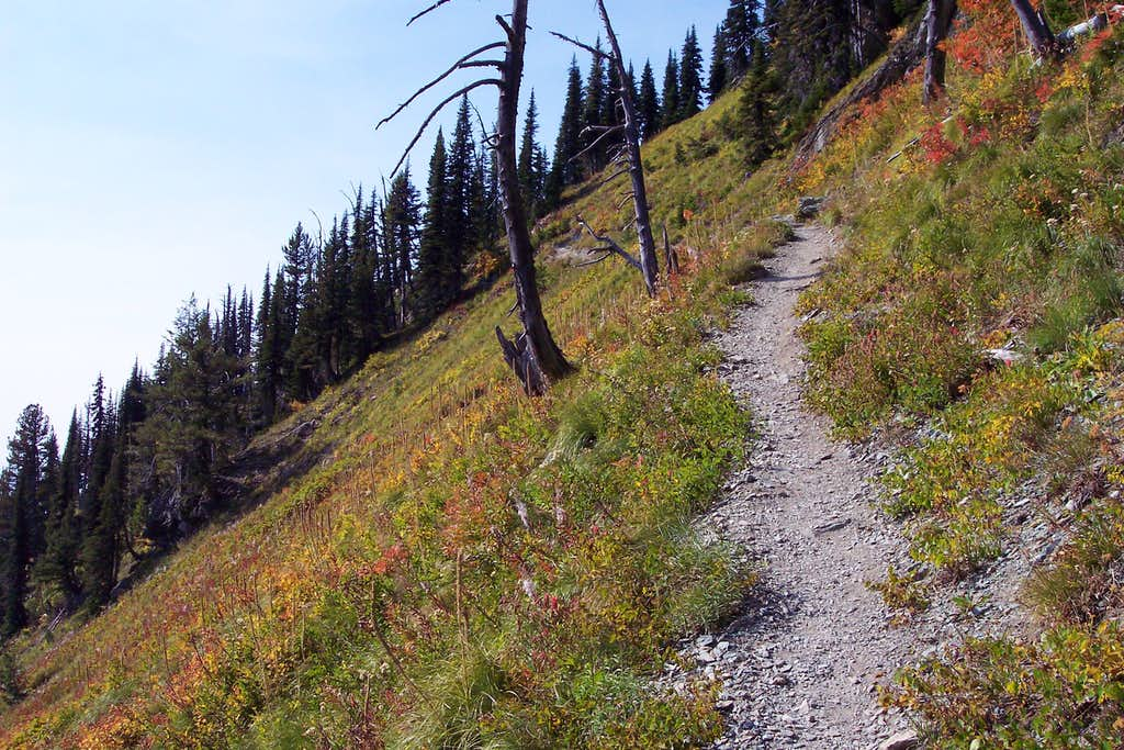 Alpine Trail #7