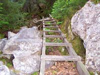 One of the Ladders