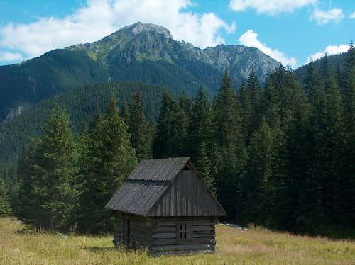 Dolina Chocholowska & Kominiarski Wierch