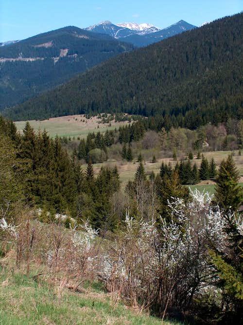 Western Tatras from Veľké Borové.