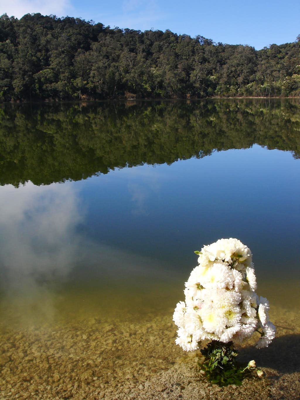 Flowers at Lake Chicabal after ceremony
