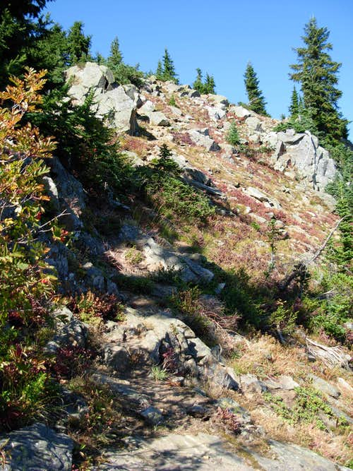 Little Wenatchee Ridge Trail