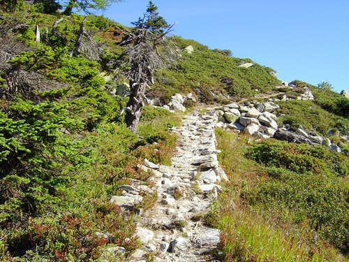 Ascent to Chüebodenhorn 3070m