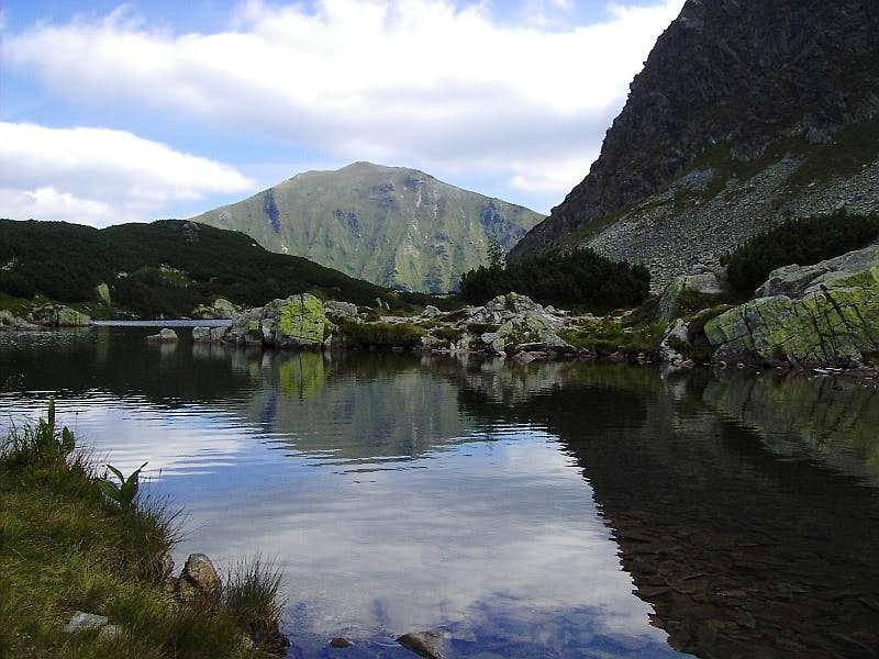 Volovec mirror in Rohackie Ponds