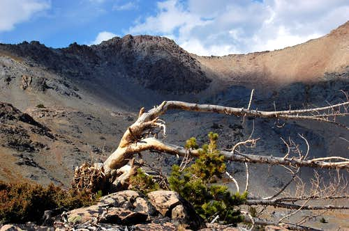 Ridge above Boulder Basin