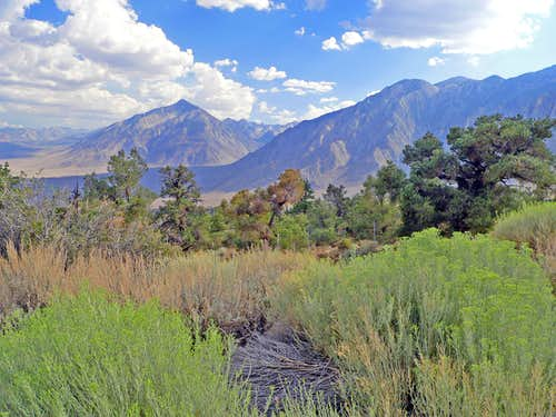 South into Owens Valley