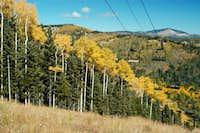 Harper Trail Midway