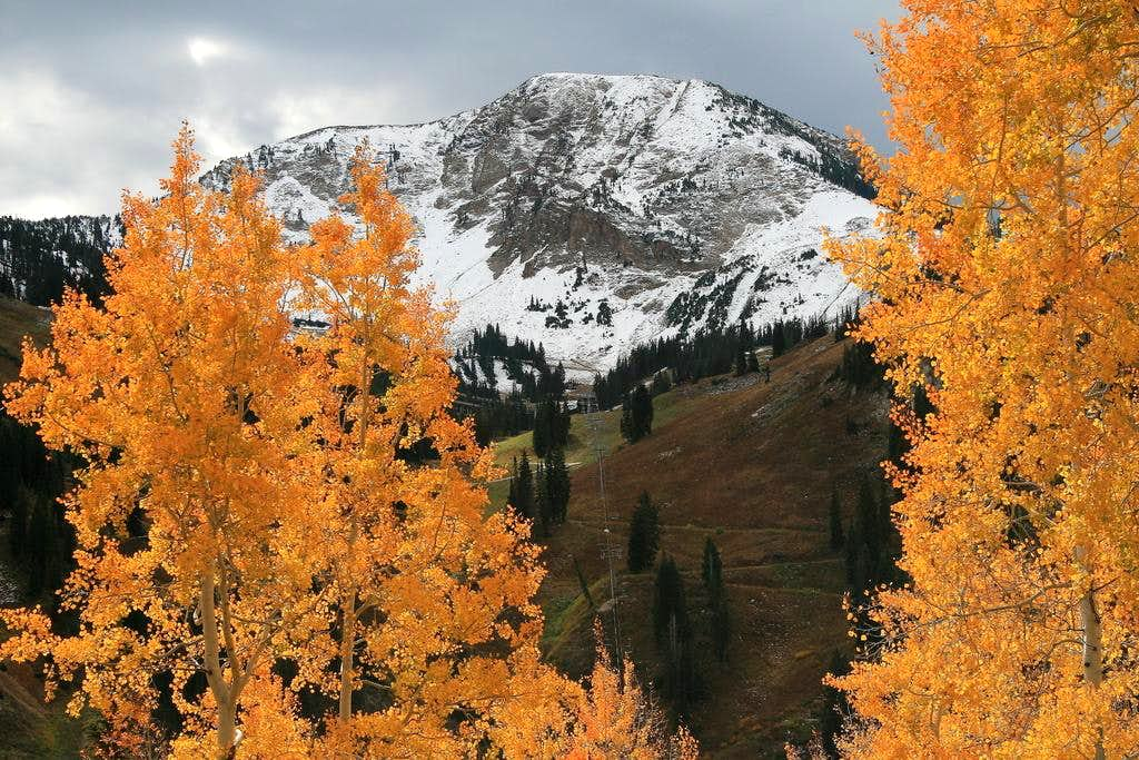 Mt. Baldy in Autumn.