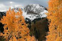 Mt. Baldy in Autumn.