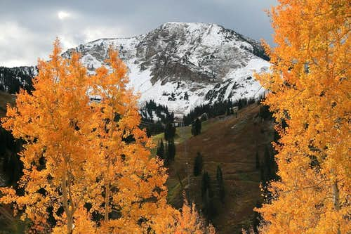 Mount Baldy  (UT)