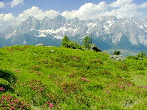 Dachstein Group seen from...