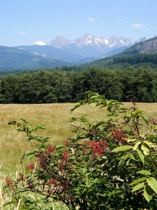 Mount Baker Scenic Byway
