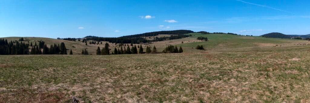 Out of Kvačianska Dolina near Veľké Borové