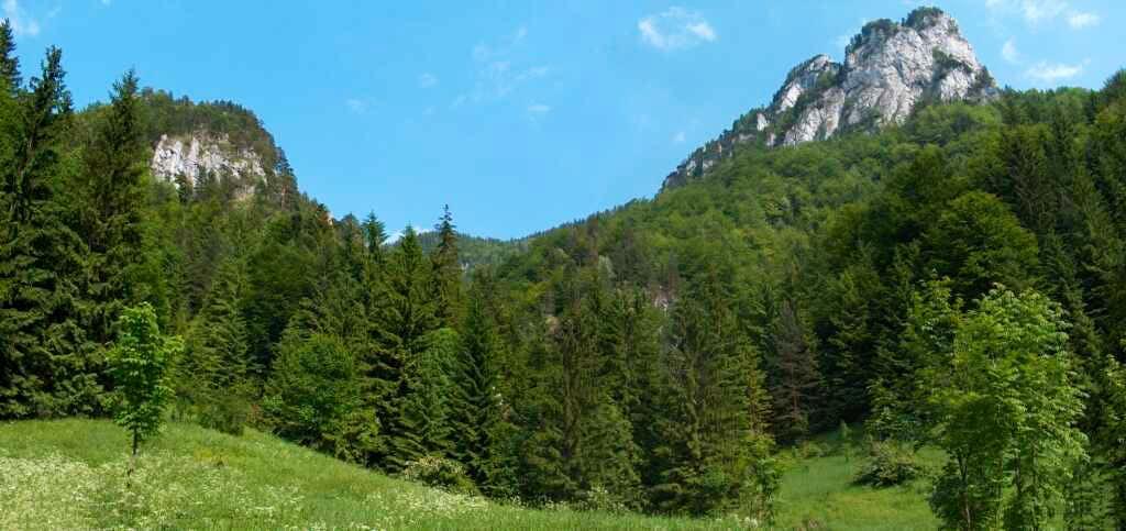 Out of Horné Diery, near Podžiar pass
