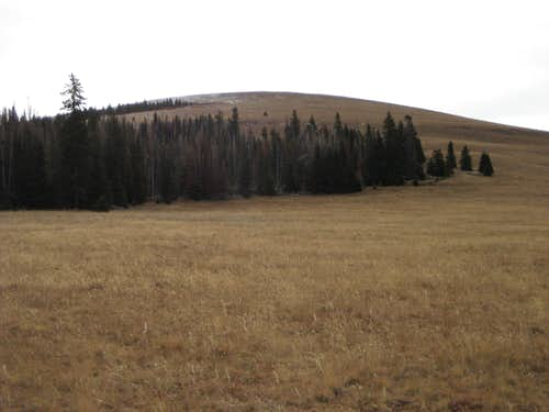 Approaching Bald Mountain