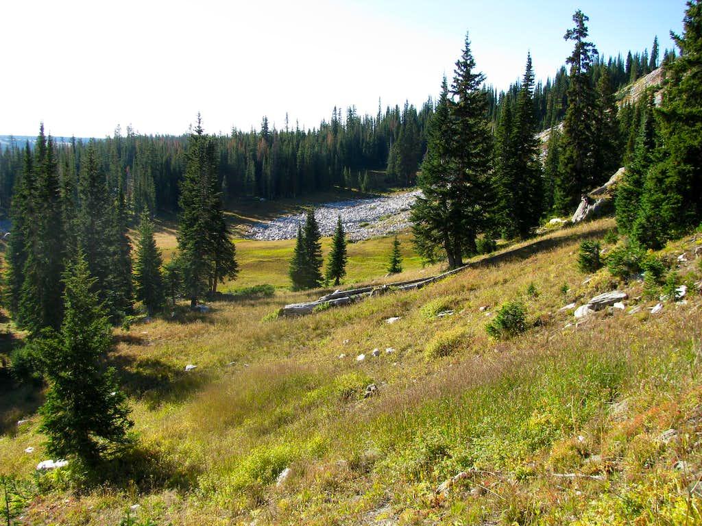 Meadow before gaining ridge