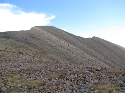 From a small saddle north of North Schell