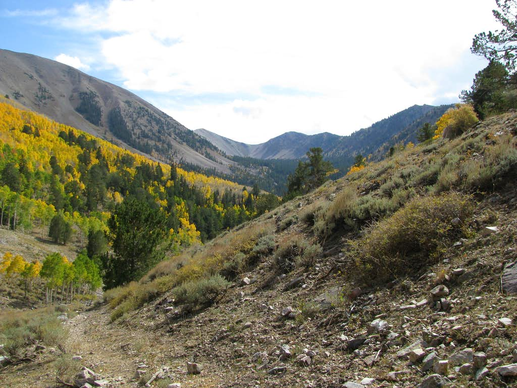 Beautiful Schell Creek Range