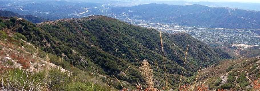 Crescenta View Trail