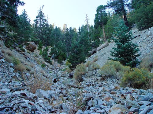 Falling Rock Canyon
