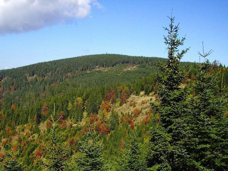 View to highest point of Beskid Sądecki Range - Radziejowa 1262 m
